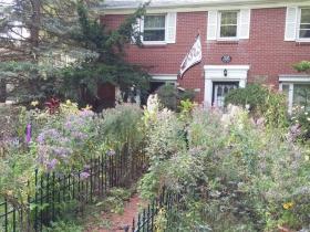 Wildflower garden on N. Swan Boulevard
