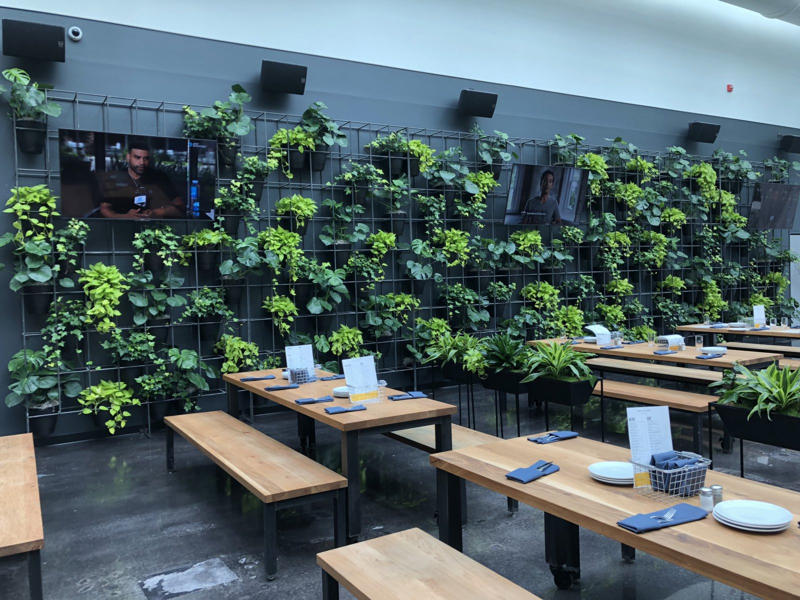 Living Wall at Glass + Griddle