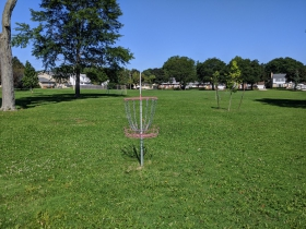 Wedgewood Park disc basket