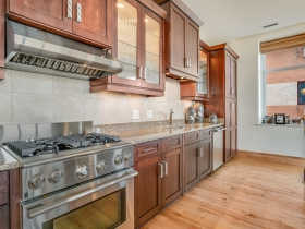 1313 N. Franklin Pl., Unit 506