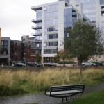 Pearl District Park & New Development