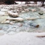 frozenflood