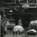 Workers inside Gallun Tannery