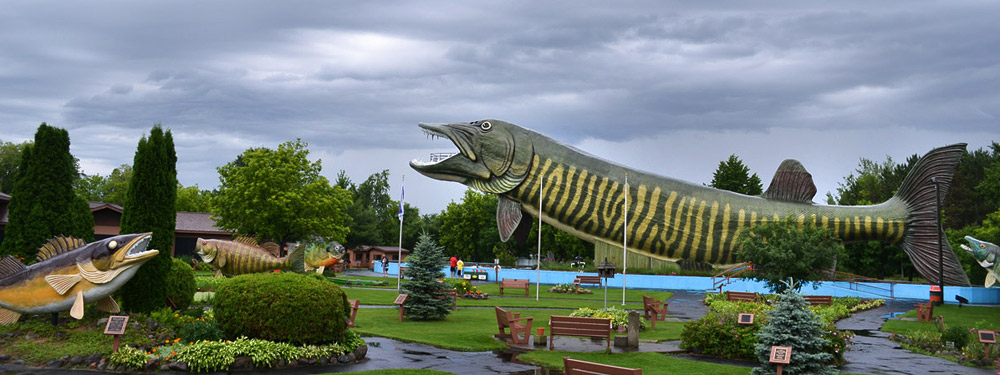 Four days in hayward urban milwaukee for Freshwater fishing hall of fame