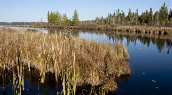 Caroline Lake, the headwaters on the Bad River. (c)Mario-Quintana