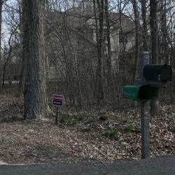 House Confidential: David Clarke's Wetland Wonder