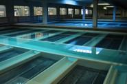 Water-Filter-Gallery-MWW-LinnwoodPlant