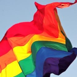 Gay Pride Flag. Photo by flickr user torbakhopper.