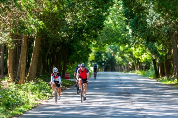 After Labor Day, the side roads in Door County are almost like bike trails, nary a car to be seen.