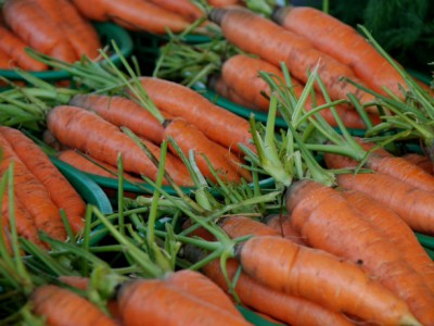 Growing Power Provides 40,000 Lbs of Carrots to Schools