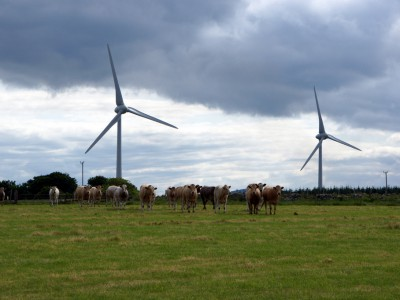 Op-Ed: Wind Power Can Reduce State's Energy Costs