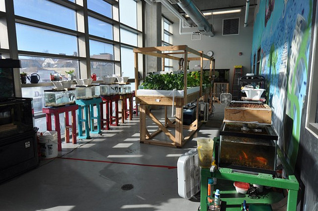The aquaponics classroom and greenhouse at Bradley Tech High School. (Photo courtesy of MPS)