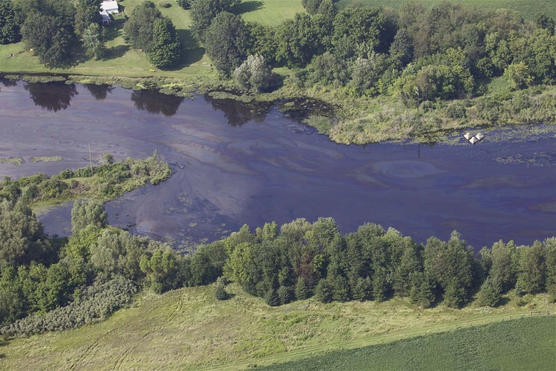 Oil in the Kalamazoo River on July 28, 2010, three days after an Enbridge pipeline burst, causing the worst inland oil spill in U.S. history. The spill was particularly difficult to clean up because some of the oil sank. Photo: Michigan Department of Natural Resources, via Flickr