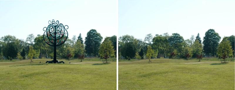 tree of life x 2 flat --800