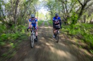 Fleck and Tom ride through tunnels of trees line much of the 100 miles of trails that make up a third of our trip.