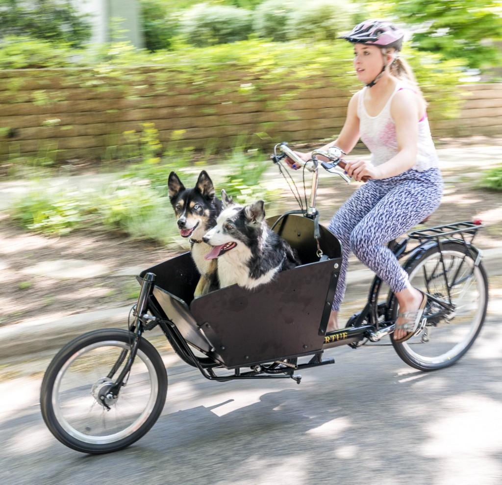 Bike Czar: The Virtue Gondoliere Can Haul Lots of Cargo ...