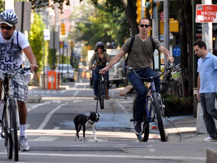 Bike Czar: The Silver Bullet for Bicycle Safety