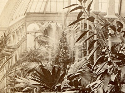 Yesterday's Milwaukee: Alexander Mitchell's Conservatory, Mid-1870s