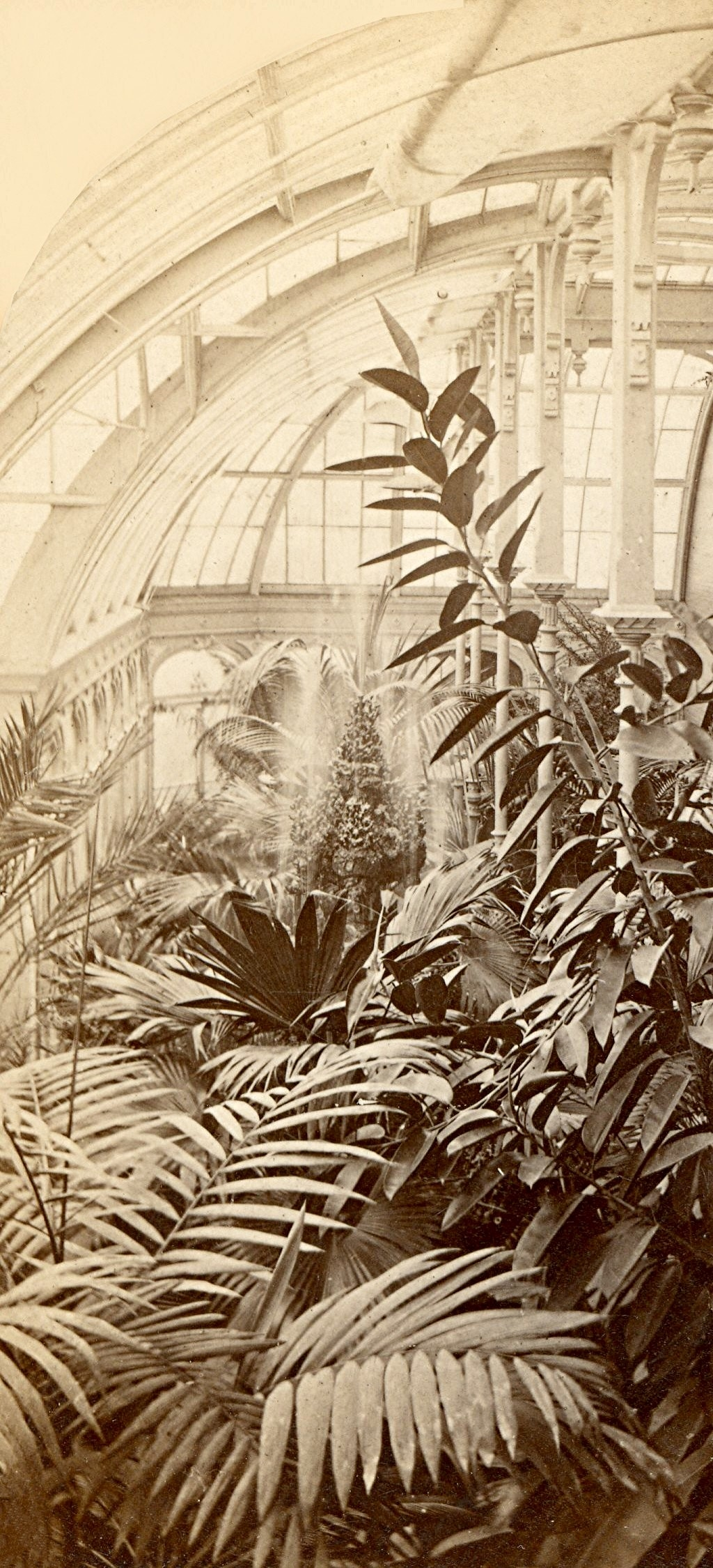 Interior of Alexander Mitchell's Mansion, Mid-1870s. Image courtesy of Jeff Beutner.