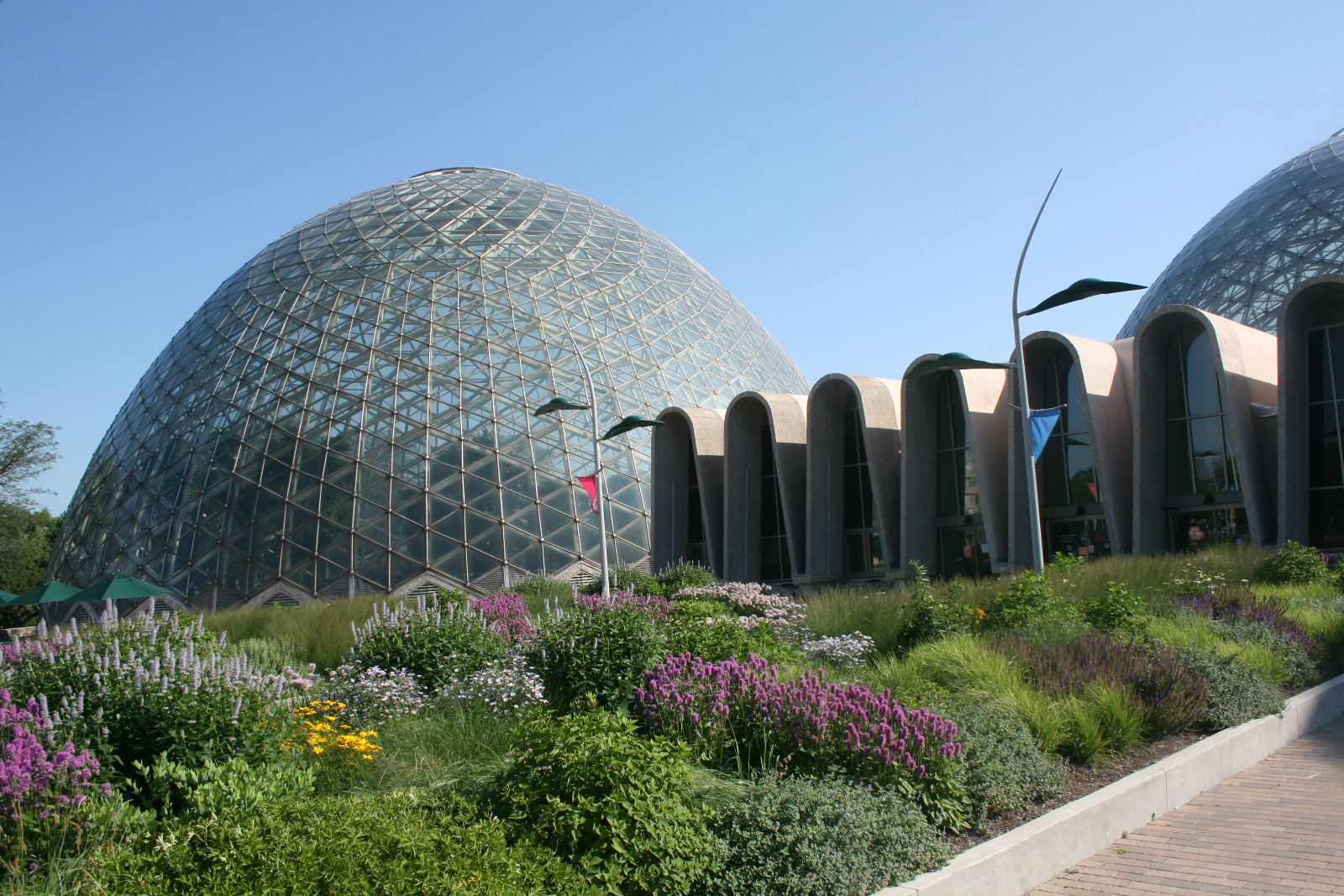 The Domes. Photo by Dave Reid.