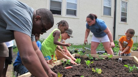 Metcalfe Park residents plant vegetables in the community garden near 28th and Wright streets in June 2013. Metcalfe Park is one of the neighborhoods in the Building Neighborhood Capacity Program. (Photo by Andrea Waxman)