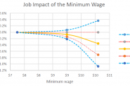 Job Impact of the Minimum Wage