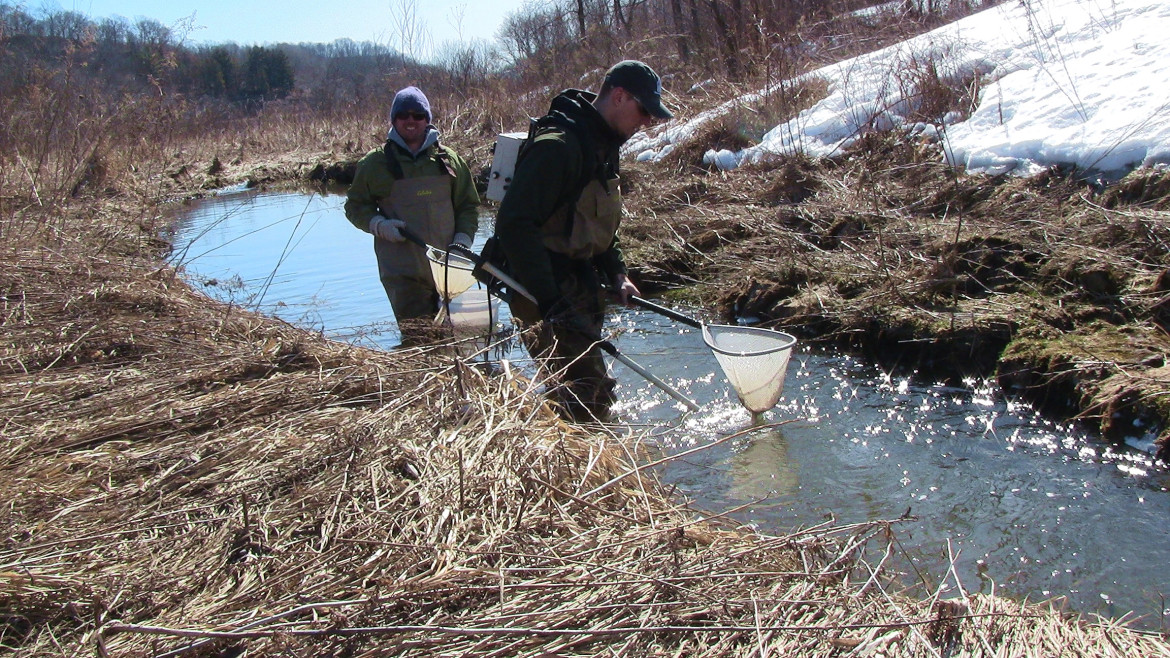 The Wisconsin Department of Natural Resources surveys the state's waterways to track everything from fish populations to mussels, as well as overall water quality. Here, DNR technicians Justin Haglund, right, and Aaron Nolan collect live brook trout from Ash Creek in April 2013 in a long-term study on the spread of gill lice. Photo from the Wisconsin Department of Natural Resources flickr feed.
