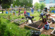 Community garden at All Peoples Church. Photo by Laura Thompson.