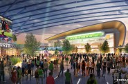 Arena Development Live Block View