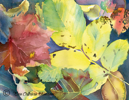 Erin Callahan Blum: Changing Colors. Photo courtesy of the CCC.