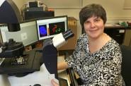 Lisa Petrella. Photo courtesy of Marquette University.