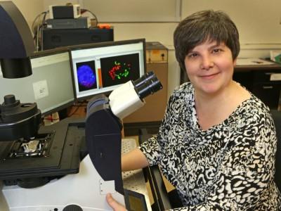 Dr. Lisa Petrella awarded Way Klingler Fellowship in science