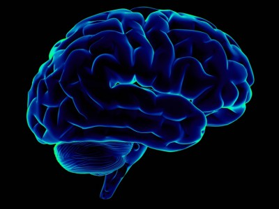 Torinus: 7 Ways to Fight the Brain Drain