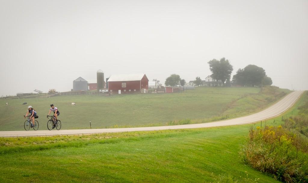 Pure Wisconsin
