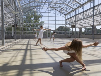A Wild Space Under Glass at Mitchell Park