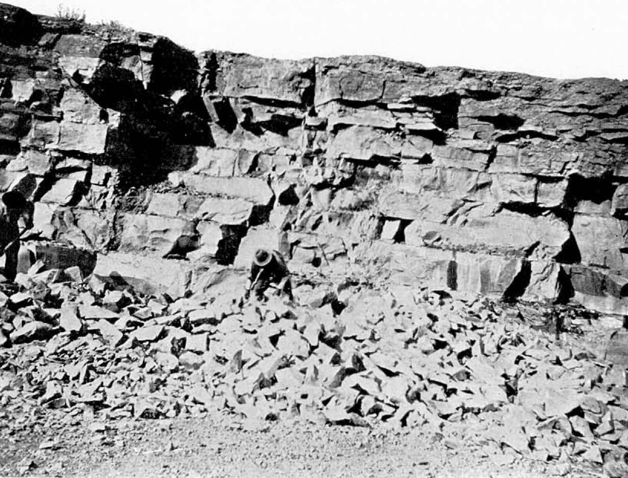 Fossil collectors in the former quarry of the Milwaukee Cement Company on the south side of the Milwaukee River. (Source: Wisc. Geol. And Nat. History Survey Bulletin No. 21, 1911)