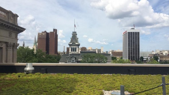 The Central Library features a green roof. Photo by Helen Koth.