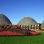 Survey Seeks Opinions on Domes' Future
