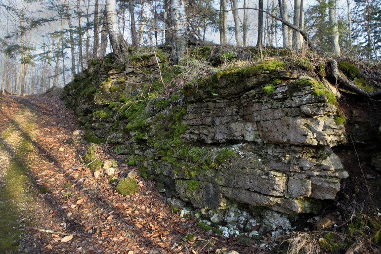The fractured karst geography of Door County is seen in this exposed piece of bedrock along a driveway in Ephraim. The porous bedrock found in the county makes it easy for sewage that leaks from failing septic tanks to make its way into private drinking water wells. Photo by Coburn Dukehart of the Wisconsin Center for Investigative Journalism.