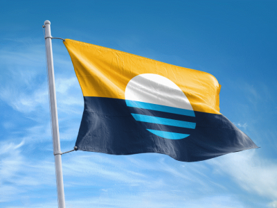 City Hall: Will City Adopt a New Flag?