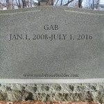 The State of Politics: Here Lies the Government Accountability Board