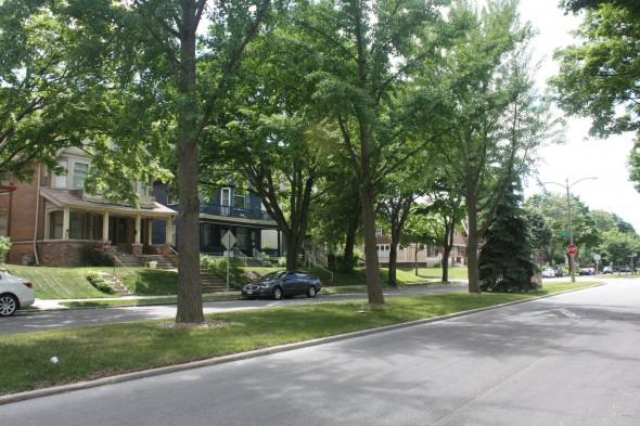 McKinley Boulevard homes. Photo by Carl Baehr.