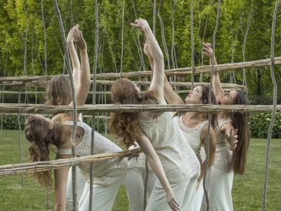 Wild Space Dance Company Announces 30th Season
