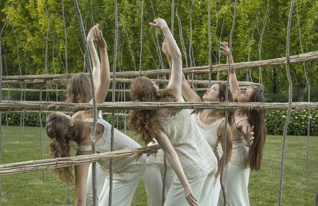 Wild Space Dance Company Announces 30th Season