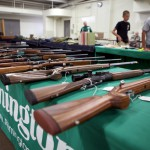 Legislature Resists Background Checks for Guns