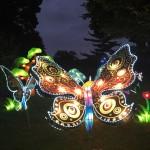 Photo Gallery: Chinese Lantern Festival