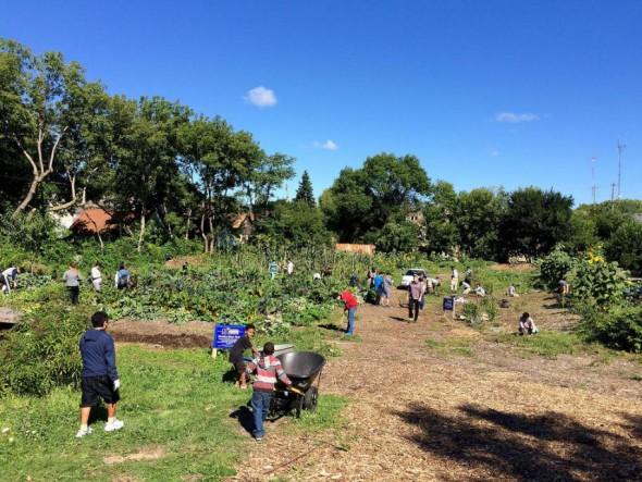 Concordia Gardens. Photo courtesy of MMSD.
