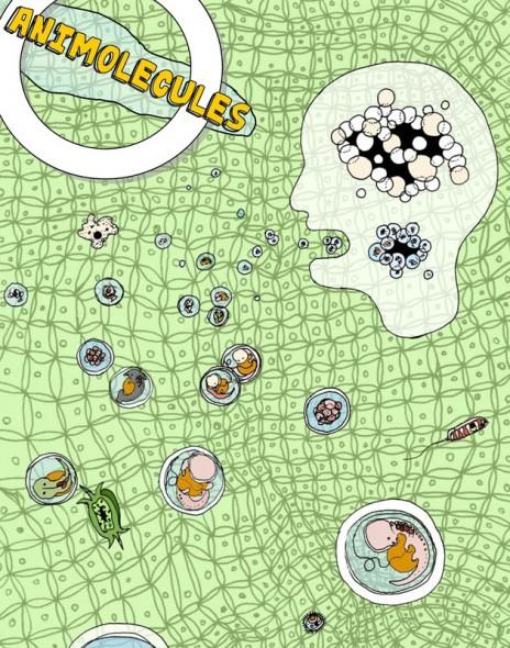 Animolecules