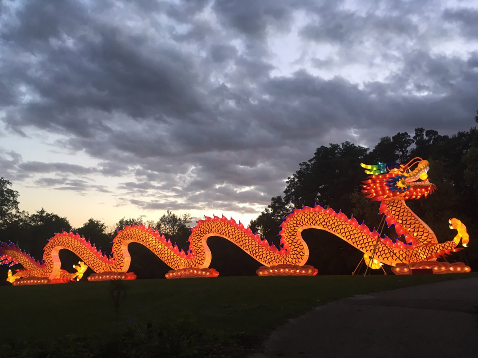 China Lights: Dragon. Photo from the Milwaukee County Parks Department.