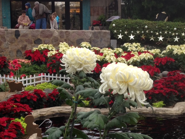 Holiday Floral Show 2015. Photo courtesy of Milwaukee County Parks.